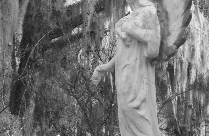 Angel of the Oak, Healing Springs SC by Teri Leigh Teed