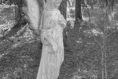 Angel of the Pines, Healing Springs SC by Teri Leigh Teed