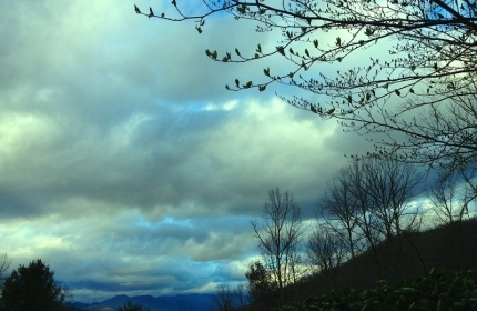Cloudy Afternoon in the Blue Ridge Mountains, Early Spring by Teri Leigh Teed