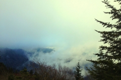 Blue Ridge Parkway, Heavenly Fog, Waterrock Knob