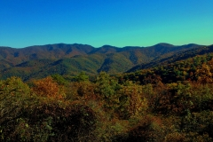 Blue Ridge Parkway View Steestachee Bald by Teri Leigh Teed