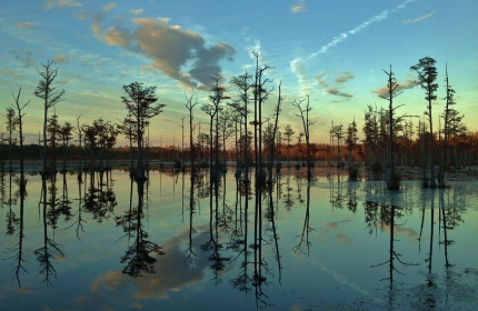 November Reflections, Goodale State Park by Teri Leigh Teed